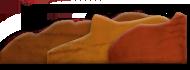 cuoio materiali vacchetta naturale